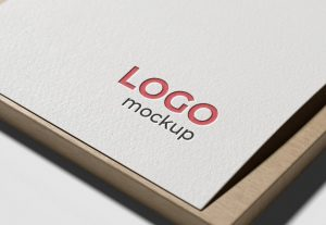 Logo-Mockup-on-White-Paper-1-300x207 Asia RPA Master